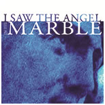 I Saw the Angel in the Marble audiobook